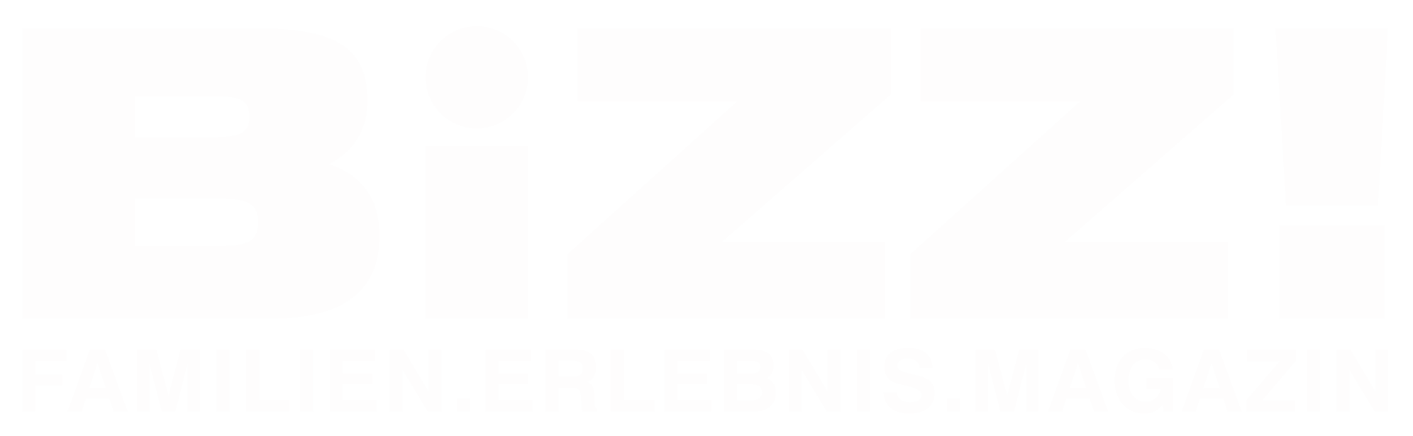 BIZZ Magazin