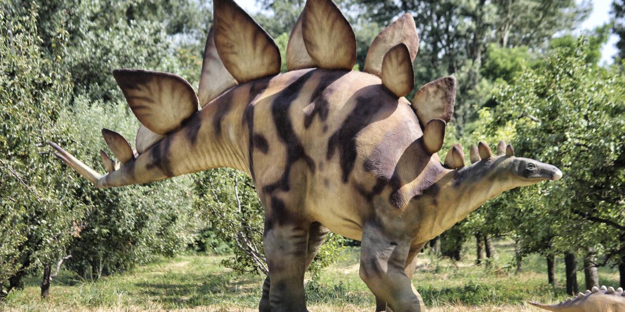 Schlosspark Tüßling wird zum Jurassic Park